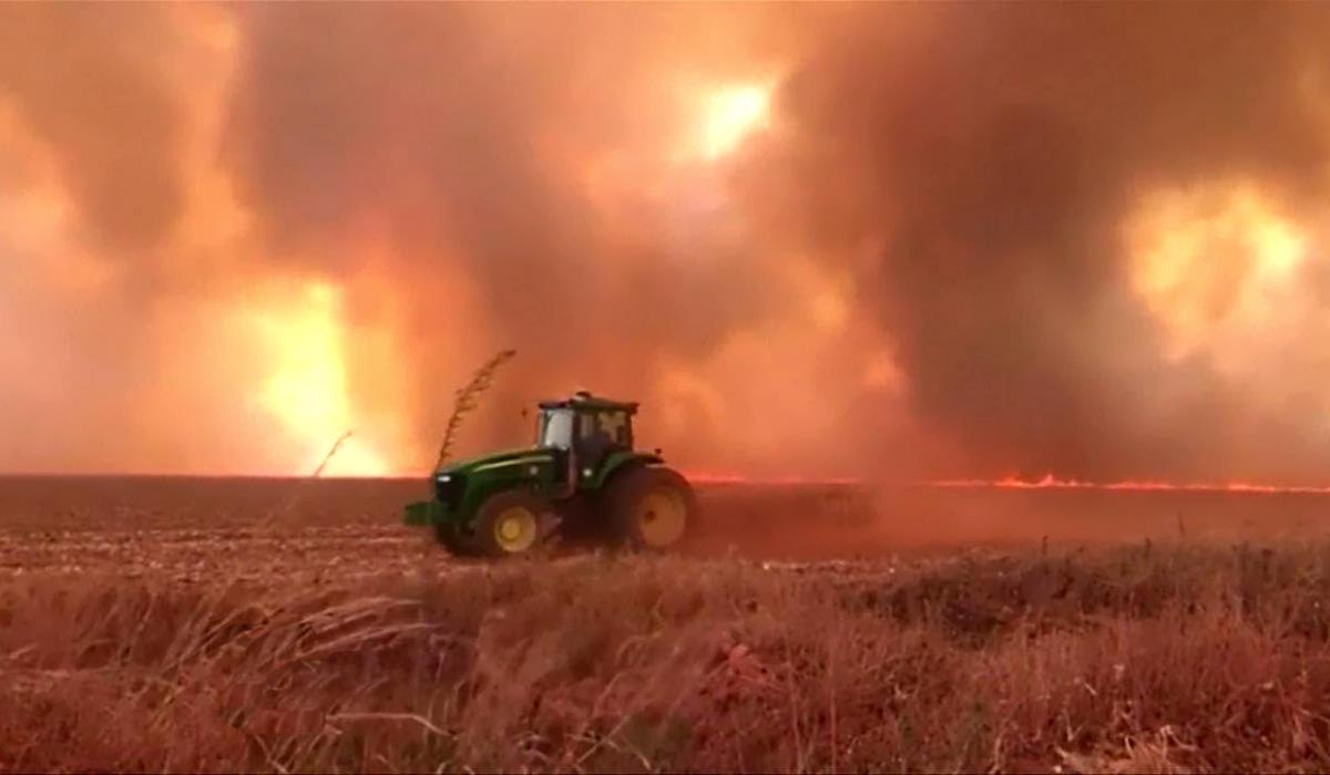 Gli incendi nella foresta pluviale amazzonica finiscono nell'agenda del G7