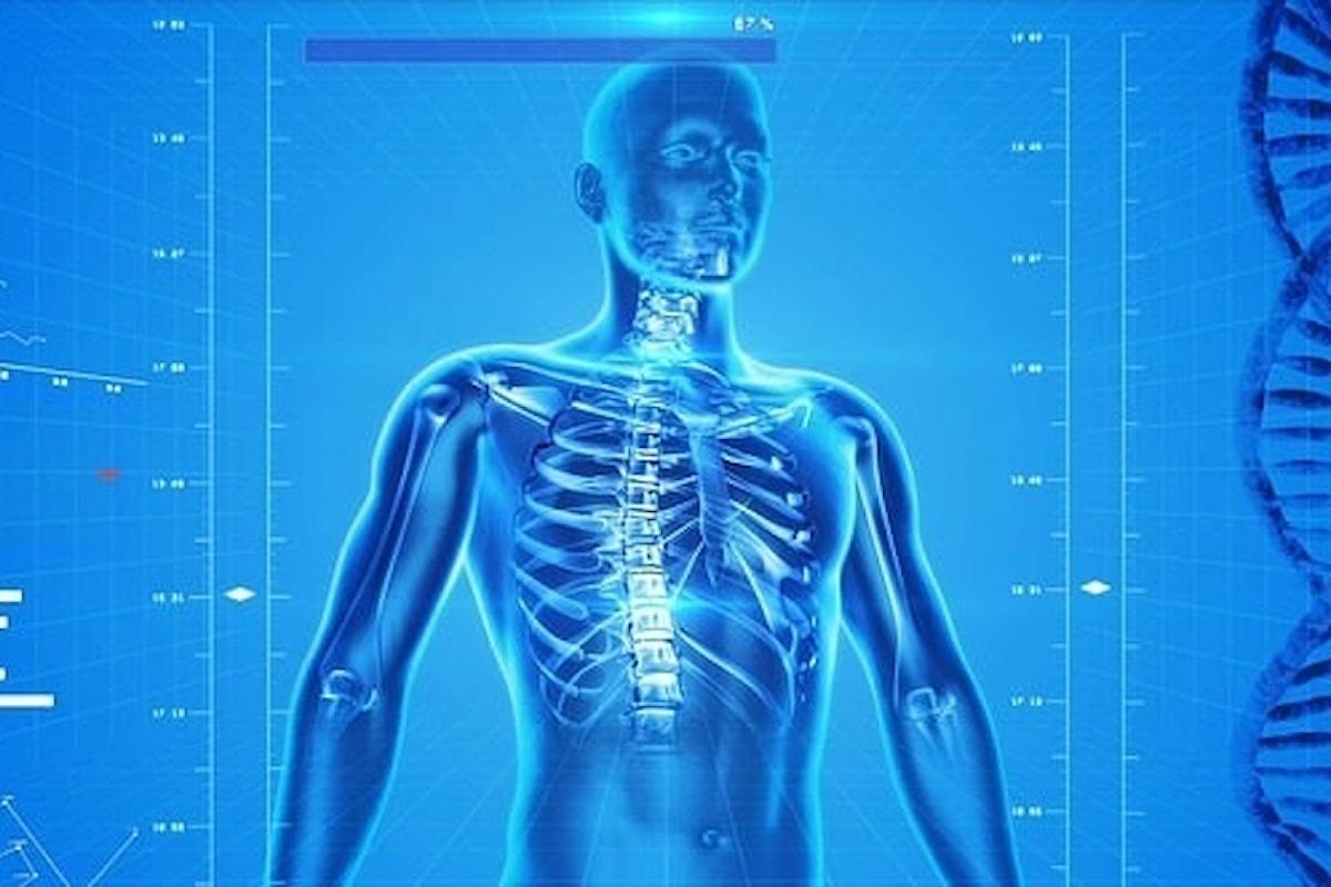 Giornata mondiale dell'osteoporosi: ecco l'alimento da mangiare per proteggere la salute delle ossa