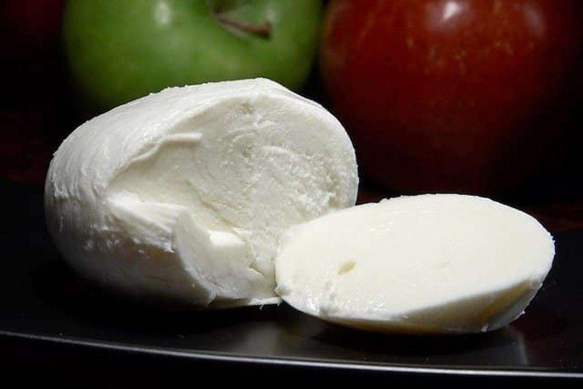 """Mozzarella prodotta nel casertano ritirata dal mercato: """"Rischio grave per la salute"""""""