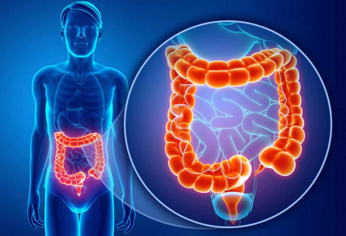 Covid-19: il virus colpisce l'intestino e si trasmette anche per via oro-fecale.
