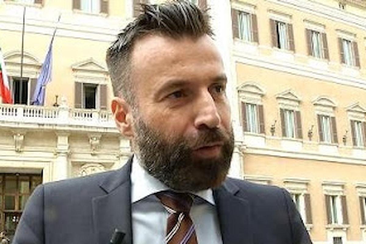 Legge contro l'omotransfobia: Forza Italia voterà contro