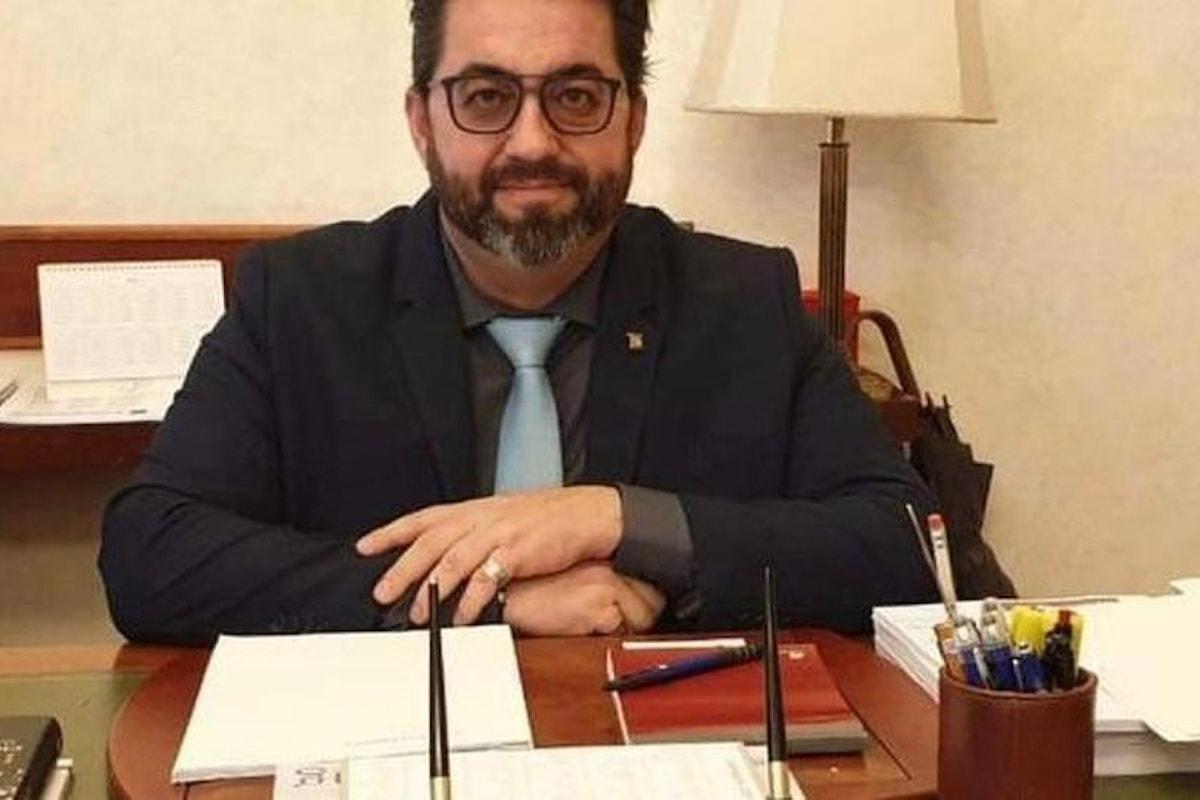"""Berardi: """"Il Governo accetti la proposta dell'Anli e confermi gli insegnanti con diploma magistrale"""""""