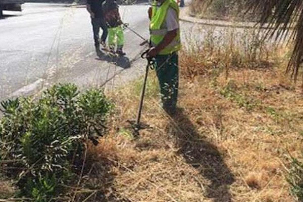 Milazzo (ME) – Ordinanza del Sindaco per pulizia fondi agricoli e prevenzione incendi