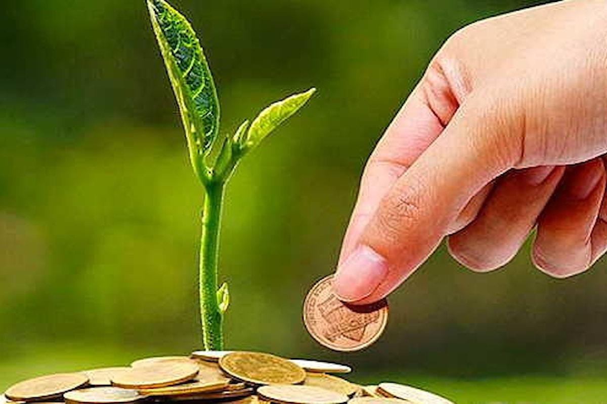 Investimenti e sostenibilità, cresce l'attenzione verso i green bond