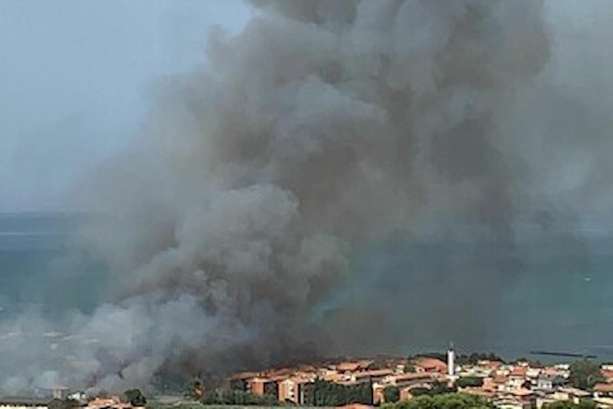 Pescara Sud in fiamme: 1 agosto di fuoco, difficile domare l'incendio