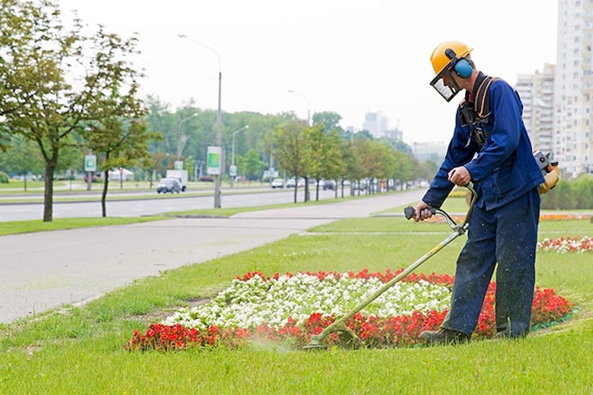 Milazzo (ME) - Annullato in autotutela il bando per assumere cinque giardinieri