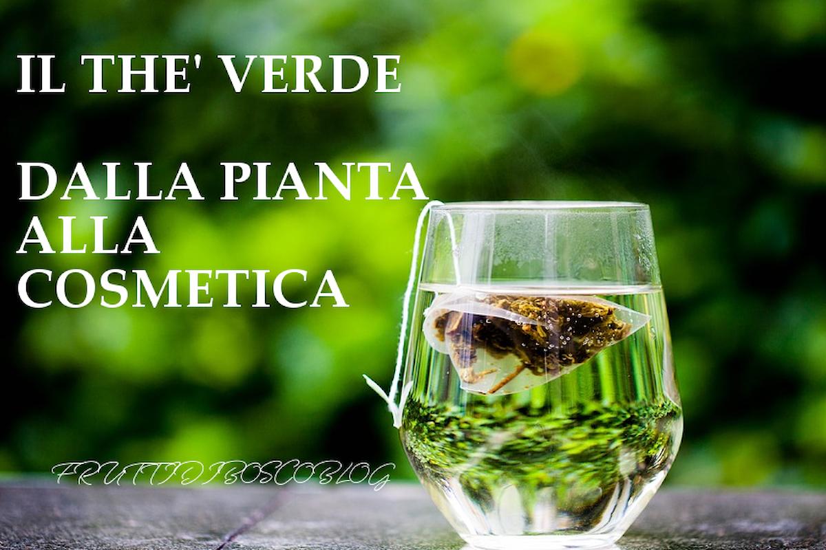 Il thè verde e il beauty: dalla pianta, alle proprietà, alla cosmetica.