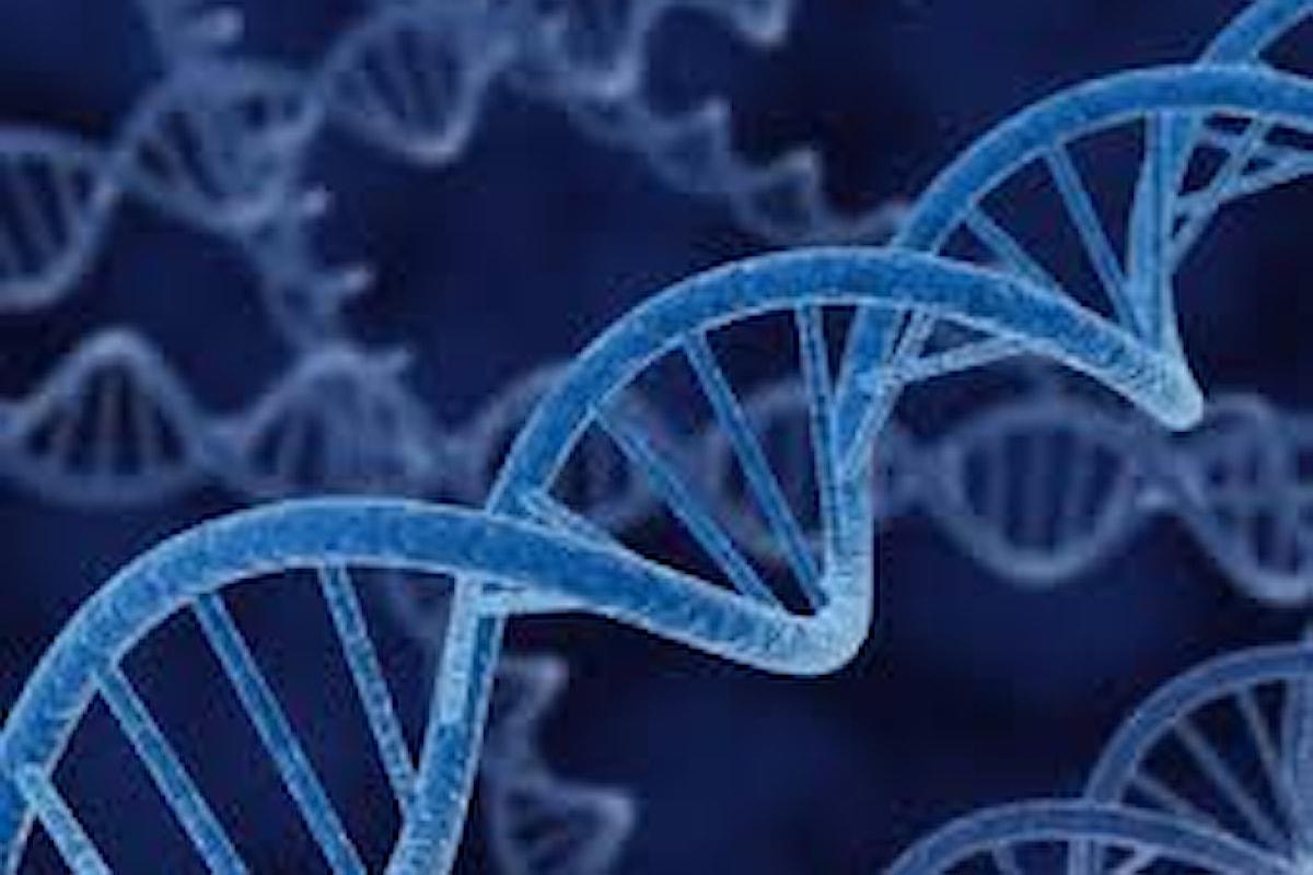 Che cos'è il genoma umano