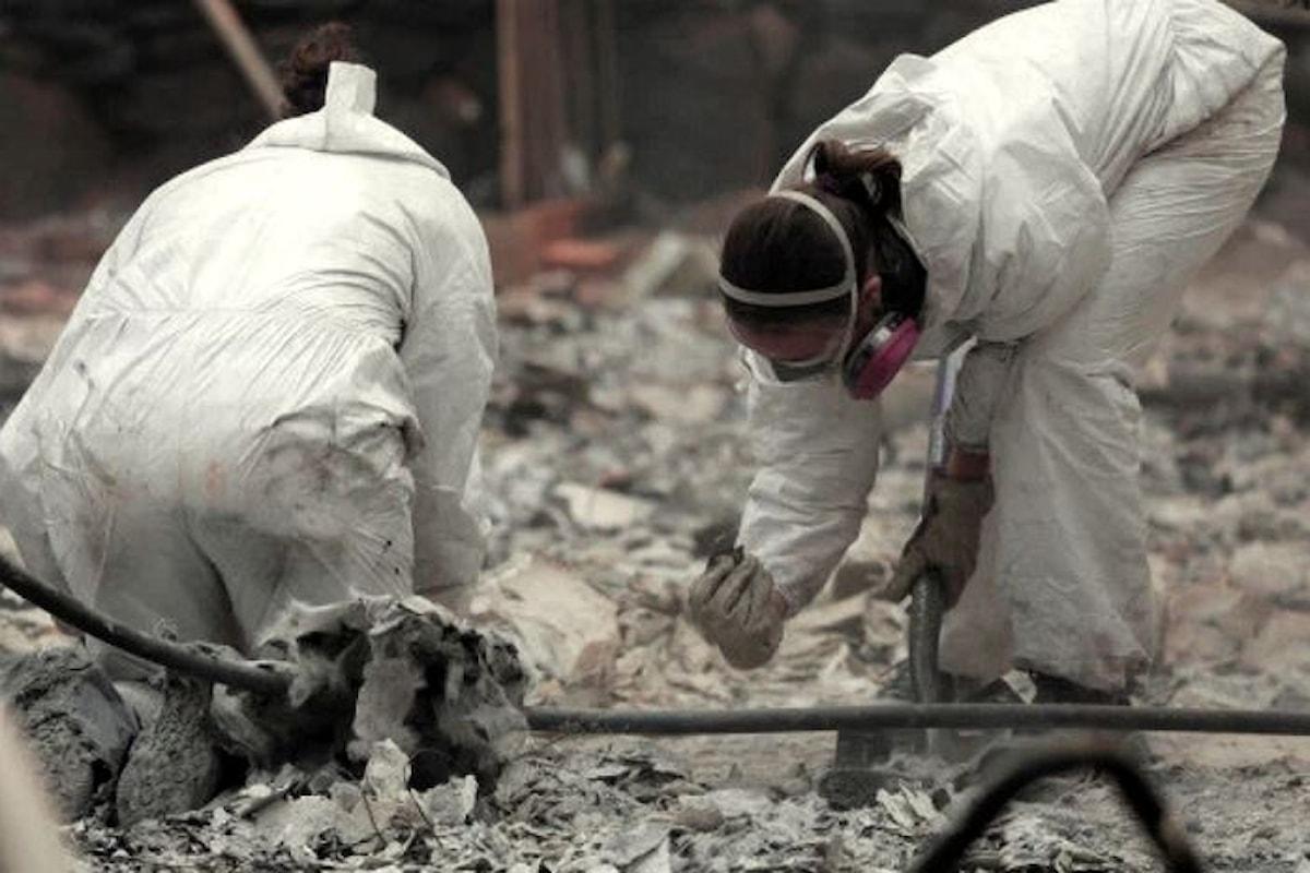 California. Continua ad aumentare il numero di vittime del Camp Fire, l'ultimo bilancio è di 48 morti