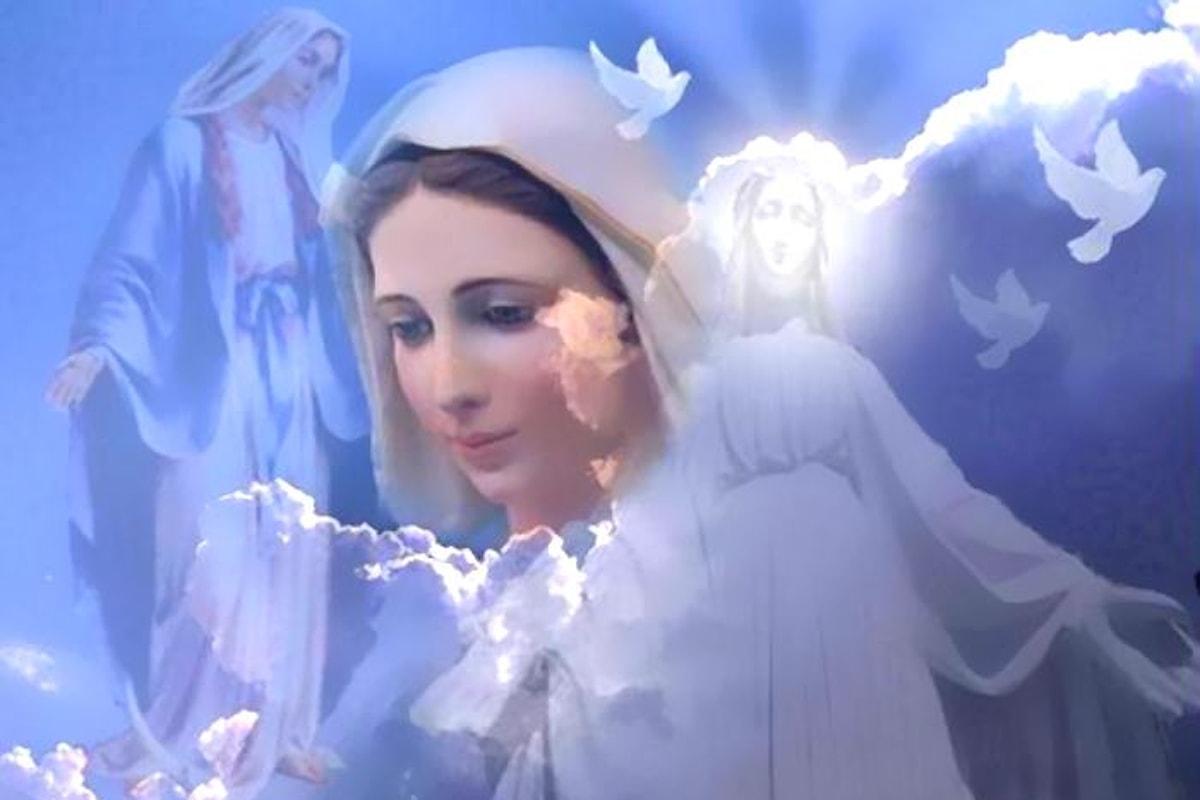 Paolo Brosio e la torta della Madonna
