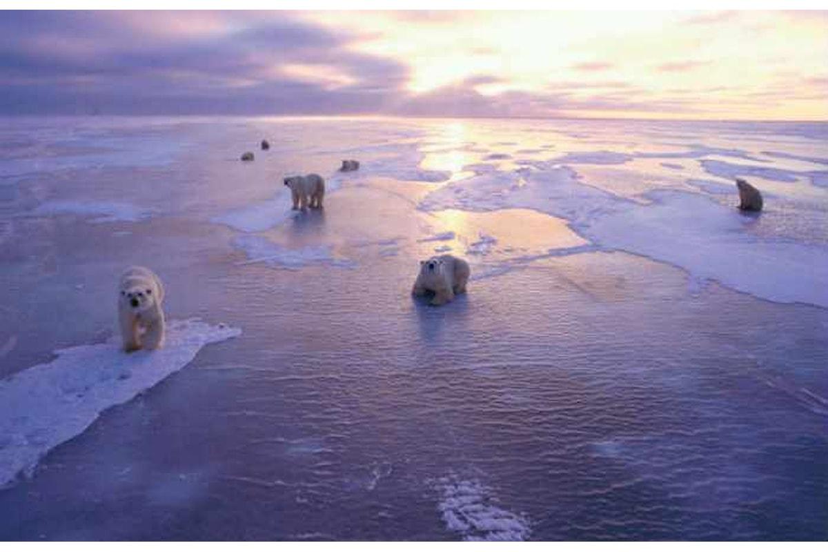 Artico: l'estensione del ghiaccio marino ai minimi storici
