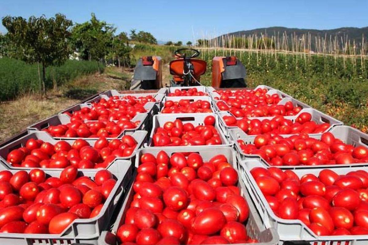 I sindacati dell'agroindustria si mobilitano contro la reintroduzione dei voucher