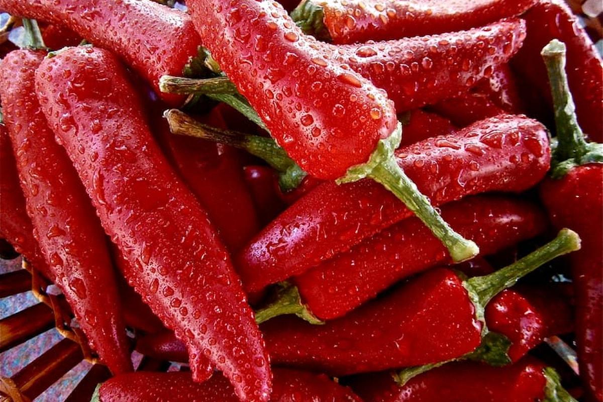 Ricette light: menta e peperoncino per stuzzicare i nostri palati!