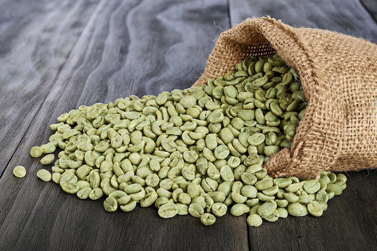 Caffè verde, come la speranza di dimagrire