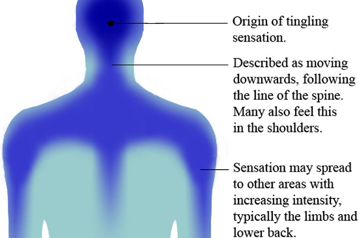 L'ASMR spiegato scientificamente