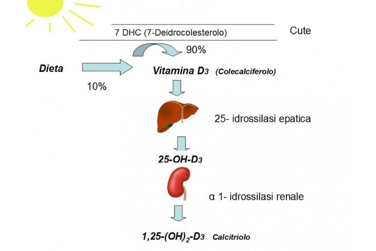 Un'integrazione di Vitamina D è veramente importante e indispensabile?