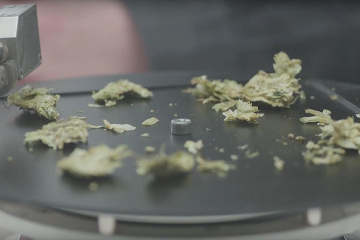 The Sound Brewery: con Nastro Azzurro gli ingredienti diventano musica