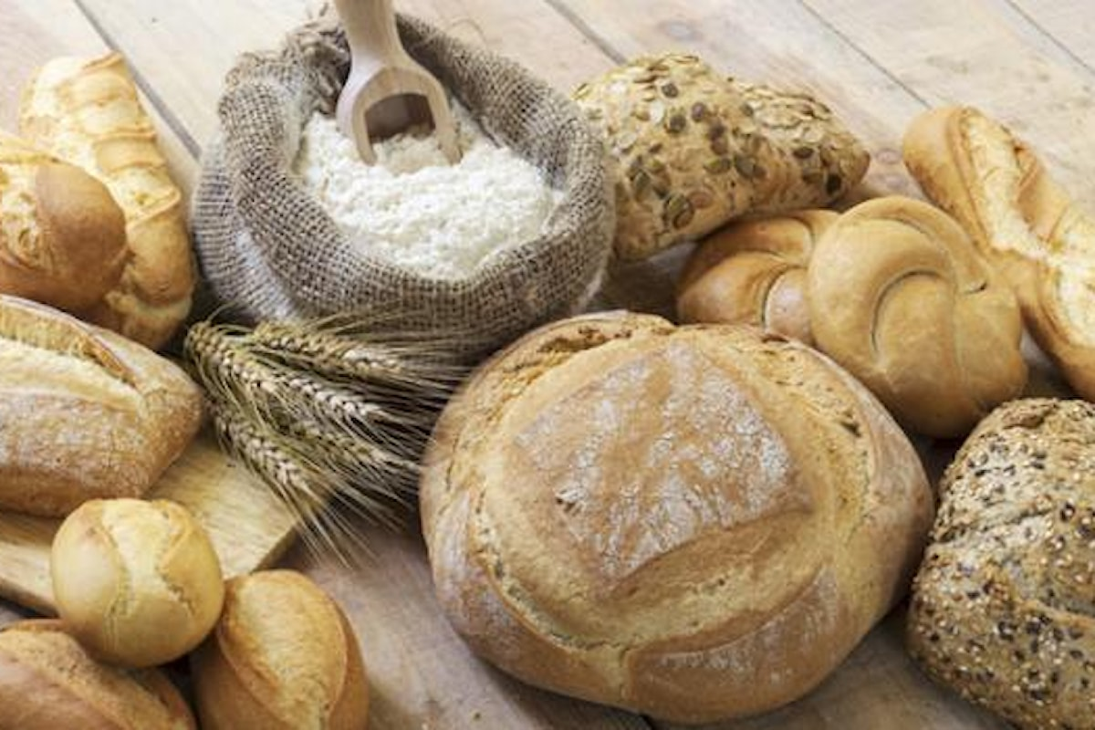 Sensibilità al glutine: non allergia, non intolleranza