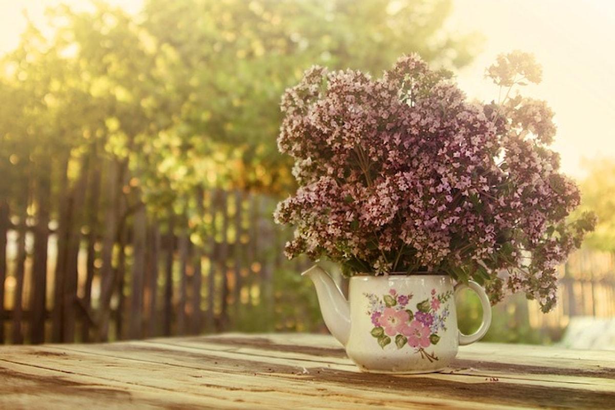 Pancia gonfia – 8 soluzioni naturali fai-da-te!