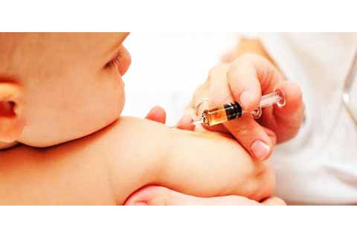 L'importanza dei vaccini e le insidie della Grande Rete
