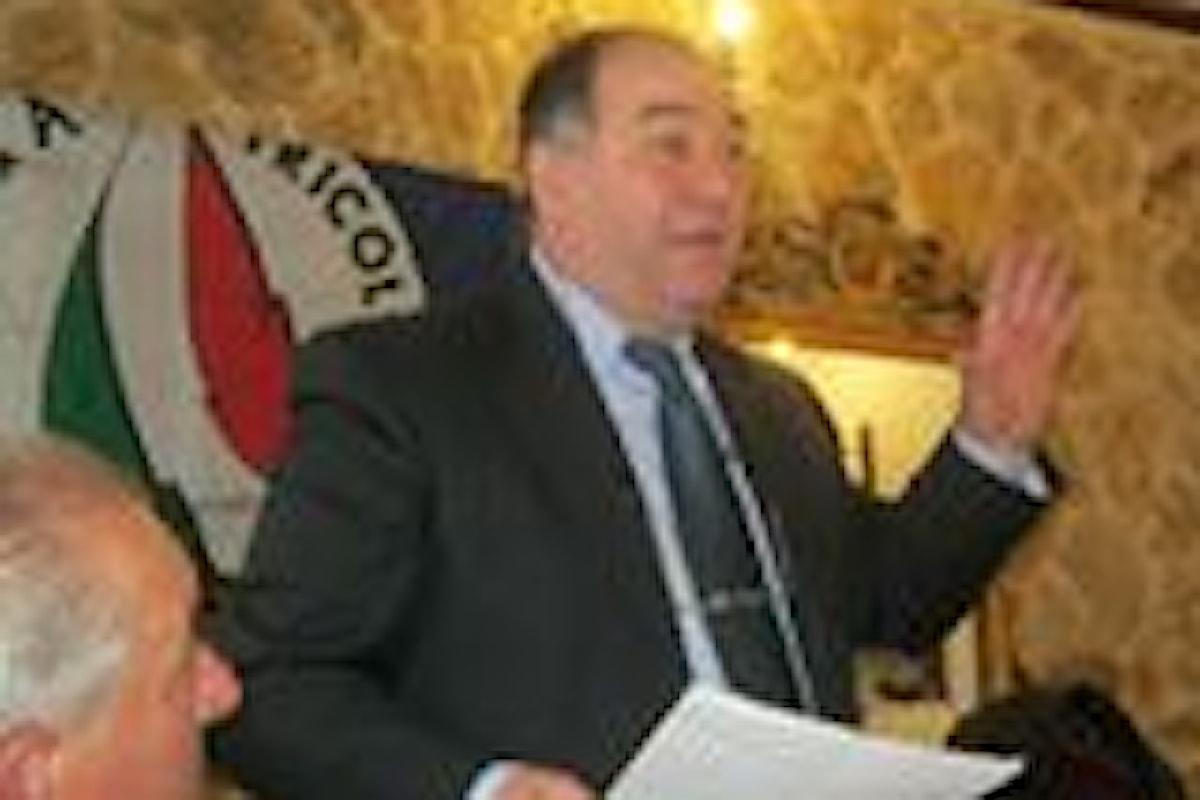 La Socializzazione nella Costituzione Italiana.(di M. Settineri)