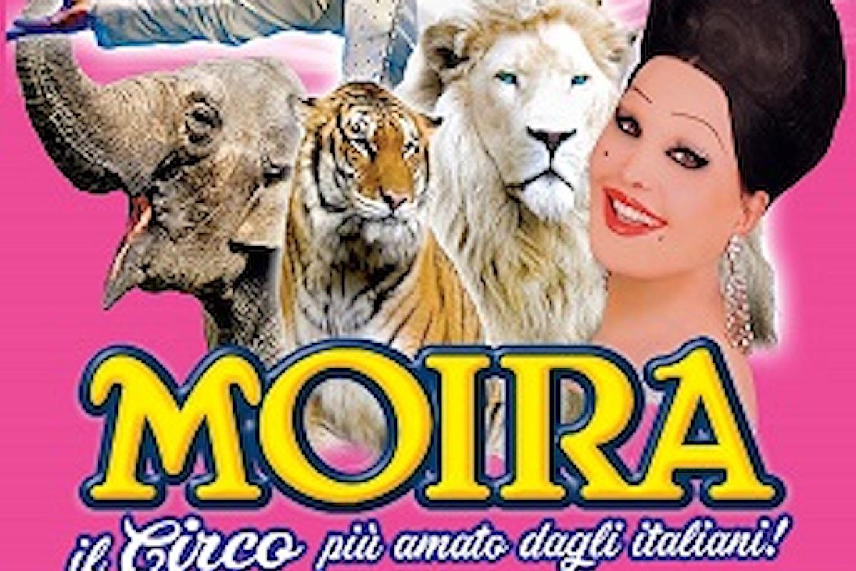Il circo di Moira Orfei a Napoli per Natale e Capodanno